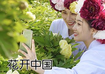 花开中国2
